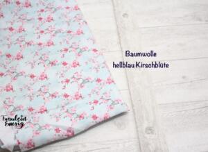 BW hellblau Kirschblüte